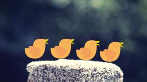 4vogels